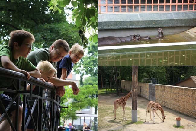 Zoo - Planckendael