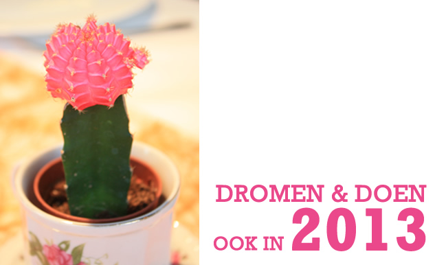 dromen en doen ook in 2013