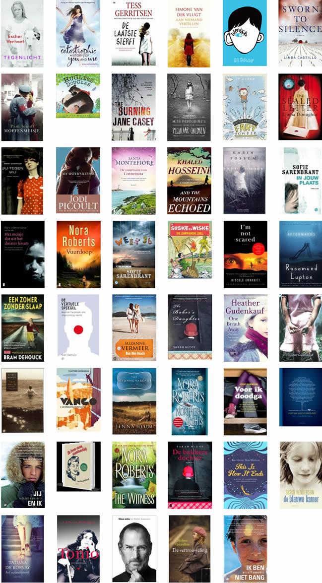 2013 in boeken
