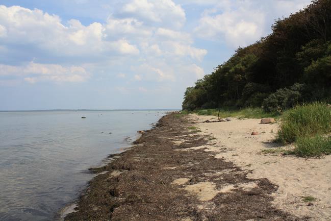 Insel Poel
