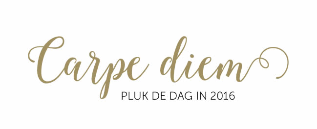 Carpe diem - pluk de dag in 2016