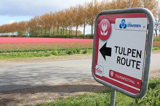 tulpenroute