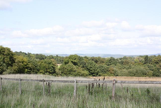 National bontanic garden wales